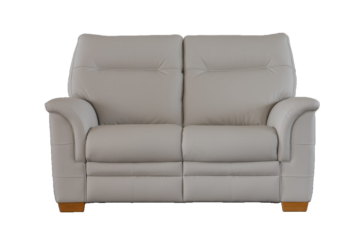 Hudson Two Seater Front Leather